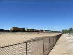 UP 8024 leading a stack train through Yuma yard, Arizona