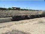 NS 8783 leading an all-NS powered stack train through Yuma Arizona