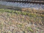Old Rail Element