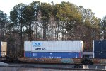 Ex CSX & Ex Pacer Containers