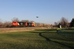A robin flys past as CN 2935 & 2934 head north up the Waukesha Sub