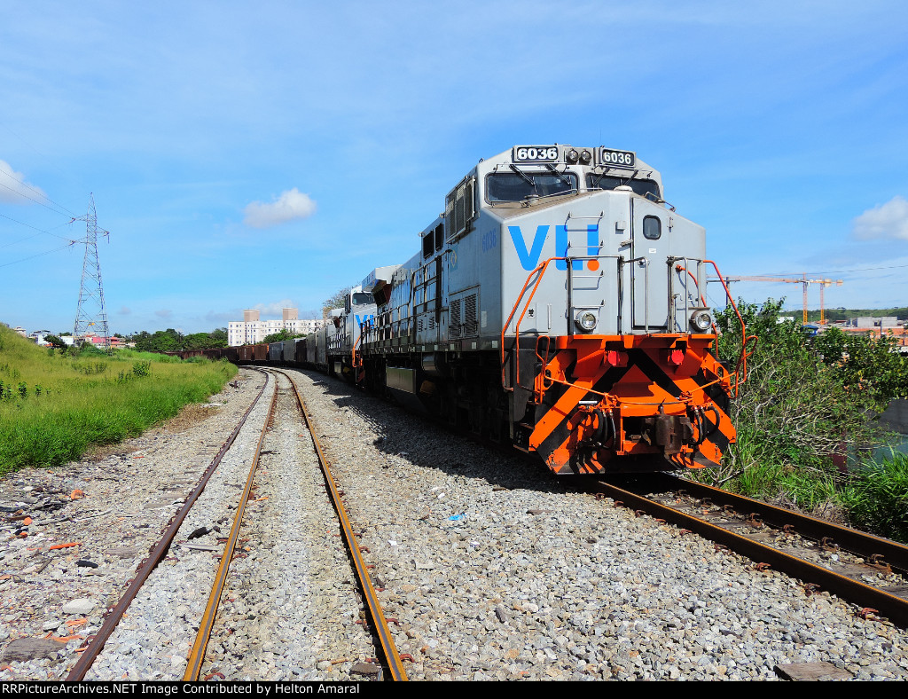 VLI 6036
