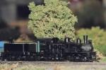 Shay Locomotive: Model RR , Sun City