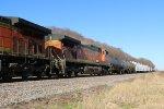 BNSF 5365 Roster shot.