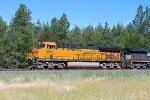 BNSF 3909