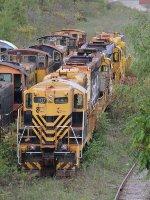 Rarus Railway 107 sits in front of 3 GP30's