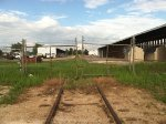 Abandoned Lumber Yard Spur