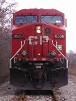 CP 8556