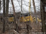Hidden in the bushes, NS SD90MAC cabs from the ACu rebuild