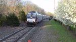 Train 1009 Pulling In