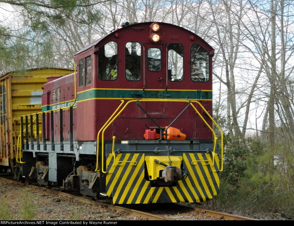 DCLR #19 slipping through the woods