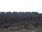 BRG International Train
