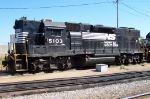 NS 5103 shows his heritage