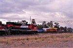 Ferrovalle Terminal yard - KCSM & FXE Locomotives