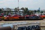 KCS & KCSM Locomotives on the yard