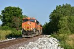 BNSF 7695 One and only golden swoosh.