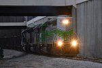 WE 6991 is new to rrpa.