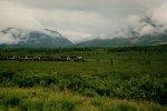 The definition of the Alaska Railroad
