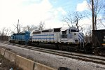 WE 6994 is new to rrpa.