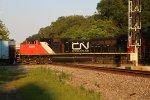 CN 8819