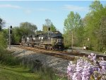 NS 9934 (NS #363) on a Spring Time day