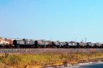 NdeM Tank Cars