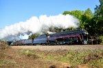 Steam excursion
