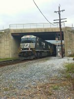 NS 2804 leading NS 203