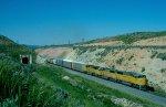 Union Pacific 6239
