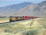 193 Cars of Intermodal Freight