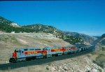 Utah 9009
