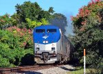 196 - Amtrak Silver Star