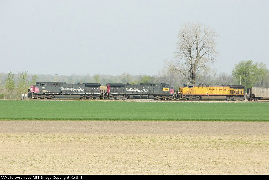 SP 347 and UP 6246  and 7204