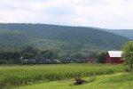 Across the Fields