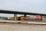 Warbonnet leads NB transfer