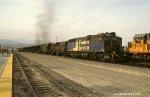 Pandrol Jackson RMSX-711 West