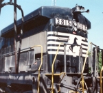 NS 3815 shows off it horns and bell on the long hood
