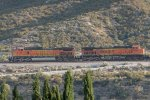 BNSF5173 and BNSF4484 passing Cajon Junction