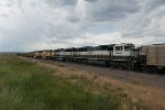 BNSF9557, BNSF9561, BNSF8832 and BNSF9996 in store in the yard