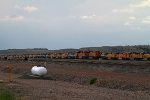 BNSF9388 and BNSF6018 + BNSF9995, BNSF9949, BNSF9986, BNSF9874 + more than 30 others stored in another line