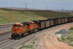 BNSF6259 and BNSF9129