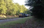 CSX AC44CW 146 blasts out of the woods