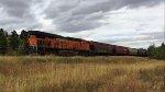 BNSF 6910 (DPU)