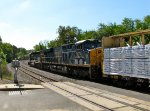 CSX 3010 and 8089