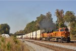 BNSF 7871 On NS 24 E Southbound