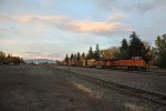 BNSF 7834 and 7384