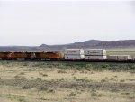 BNSF 7438 West