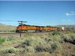BNSF 5208 West