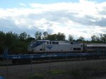"Amtrak 64 ""Maple Leaf"""
