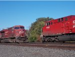 CP 8751 and CP 9655